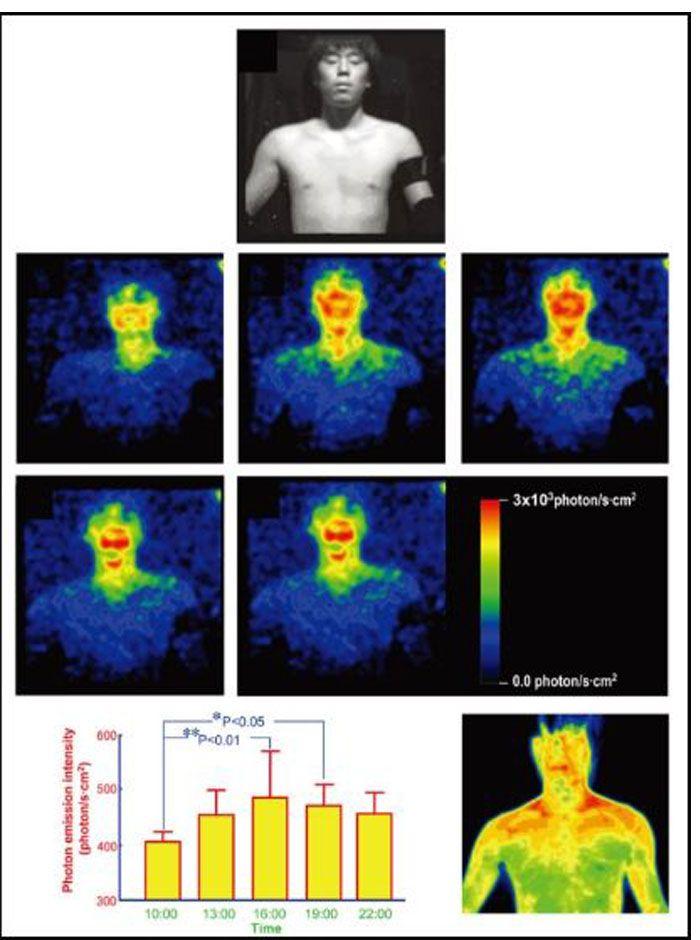 عکاسی بیولومینسانس از بدن انسان با یک دوربین فوق حساس