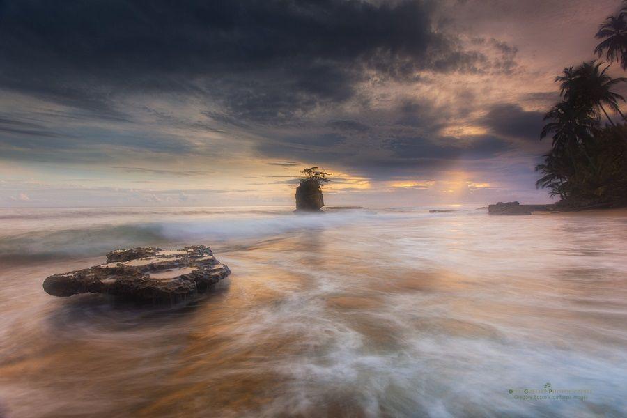 نکات عکاسی از طبیعت/ترکیببندی